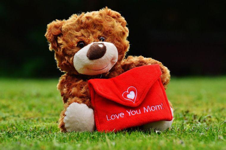 teddy-1338887_1920